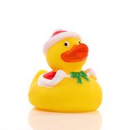 Canard Noël