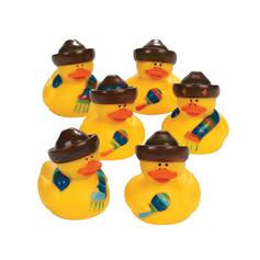 Mini Canard Fiesta