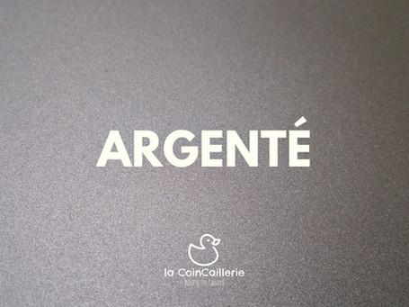 ARGENTÉ_Canard_CoinCaillerie_2.jpg