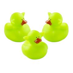 Mini Canard Grandes Oreilles Vertes
