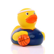 Canard Basket