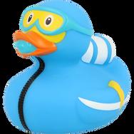 Canard Plongée