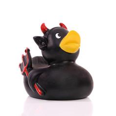 Canard Diable Noir