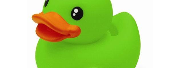 Canard Tirelire Vert