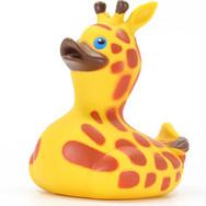 Canard Girafe