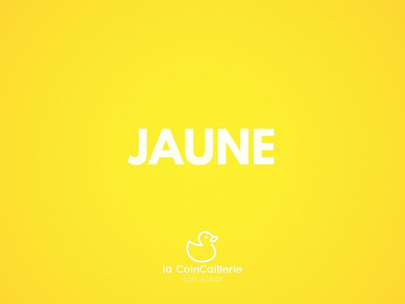 Yellow Duck CoinCaillerie 2 (1) .jpg