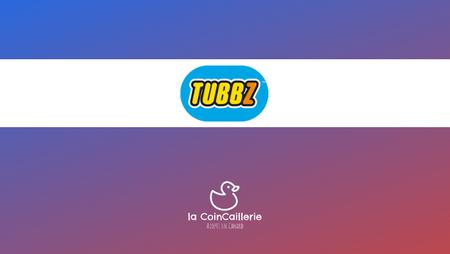 tubbz LOGO COINCAILLERIE.png