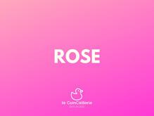 ROSE Canard CoinCaillerie 2 (1).jpg