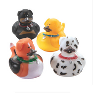 Pack Minis Canards Animaux