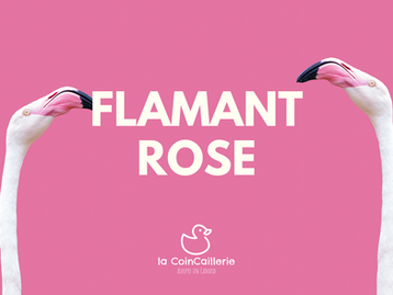 Flamant Rose (1).png