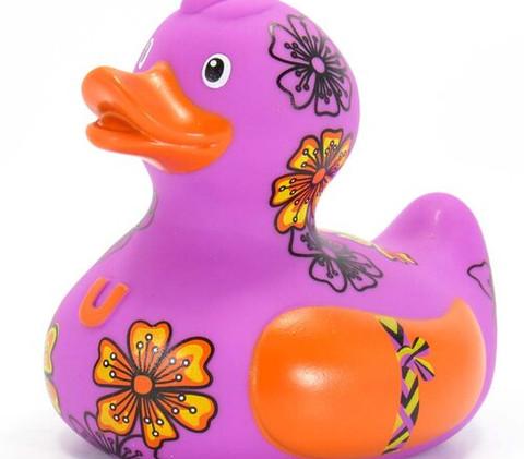 Canard de l'Amitié
