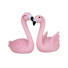 Couple de Flamants Roses