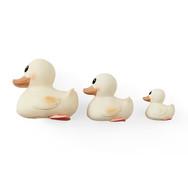 Famille Canard Kawan Blanc