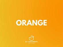 Orange Canard CoinCaillerie 2.jpg