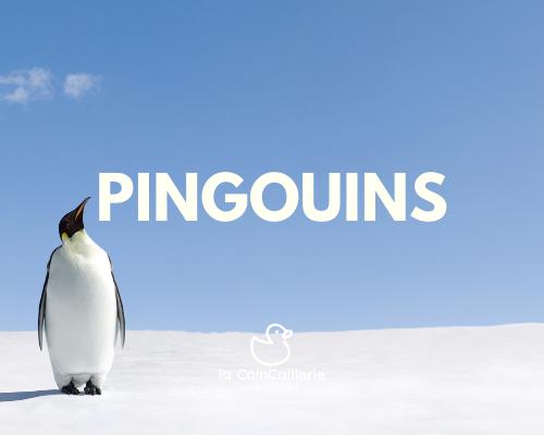 Pingouin de bain.png