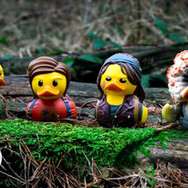 Canards The Last of Us