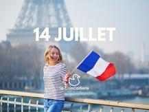 canard français fête nationale - la coincaillerie (15).png