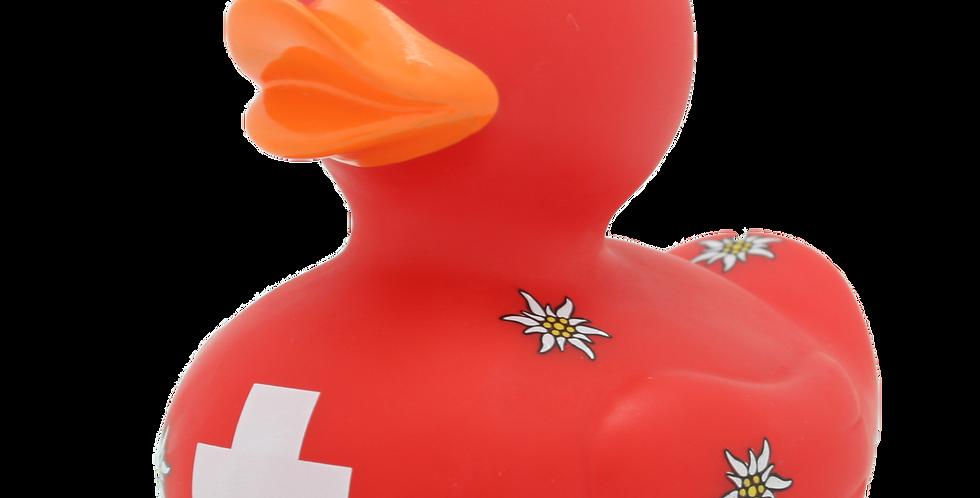 Canard Suisse
