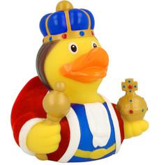 Canard Roi