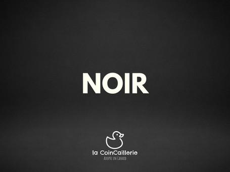NOIR Canard CoinCaillerie 2.jpg