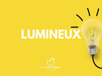 Canard Lumineux - CoinCaillerie.png
