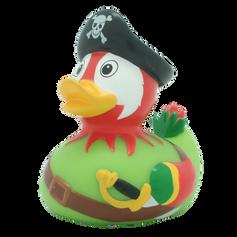 Canard Perroquet Pirate