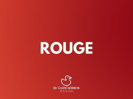 ROUGE Duck CoinCaillerie 2.jpg