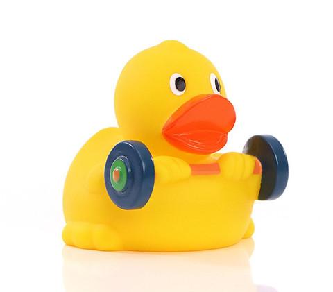 Canard Musculation