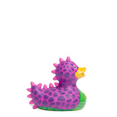 Mini Canard Dragon