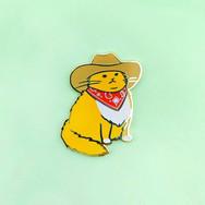 Pins Chat Cowboy