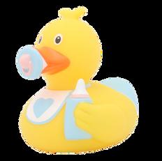 Canard Bébé Garçon