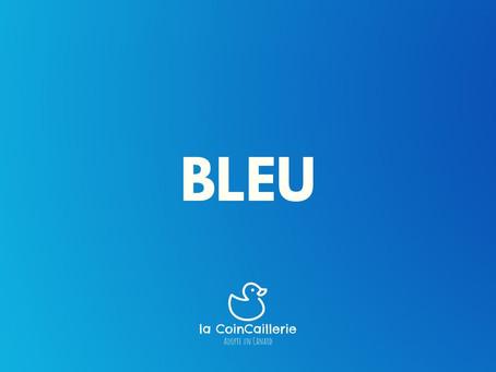 Bleu Canard CoinCaillerie 2.jpg