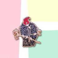 Pins Perroquets Amoureux