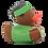 Thumbnail: Canard Africain