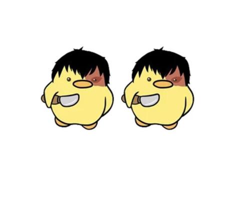 Boucles d'Oreilles Canard Zuko
