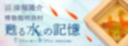 goldfish_bn_slide_pc.jpg