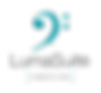 LumaSuiteCarbonCases-e1506689911878.png