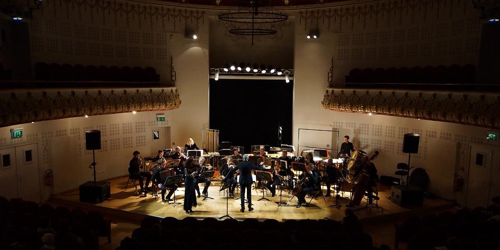 2020 Festival Terraqué 2020 / Secession Orchestra