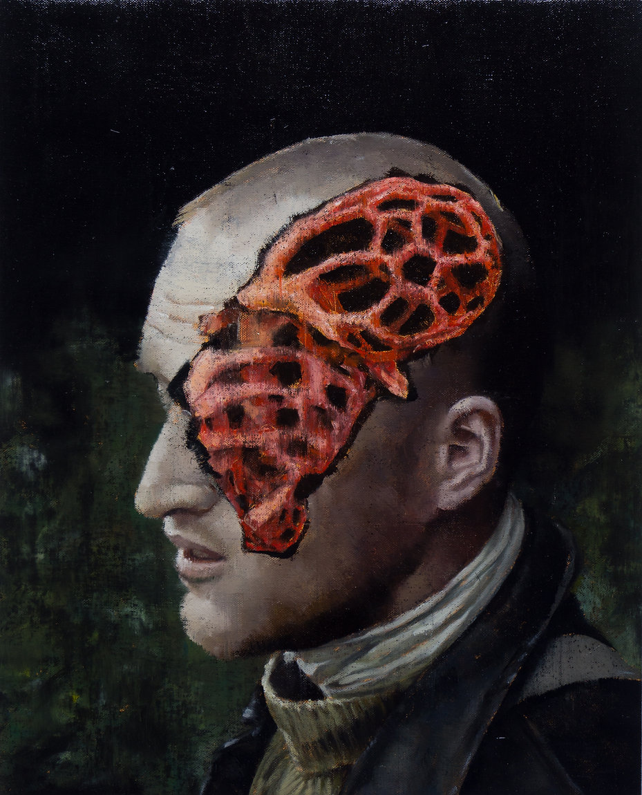 2016, Cortex Fungus Series, 50x40 cm, oil on canvas