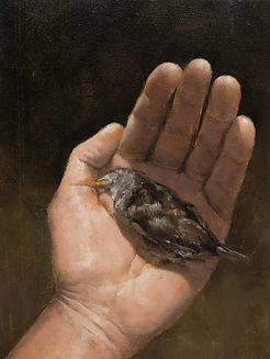 2014, Dead Bird, 40x30 cm, oil on Canvas
