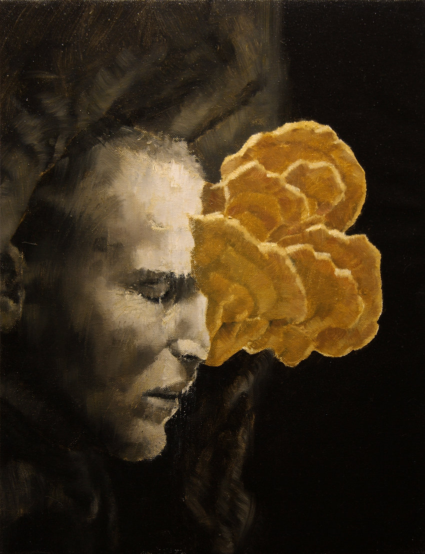 2013, Cortex Fungus series, 45x35 cm, oil on canvas