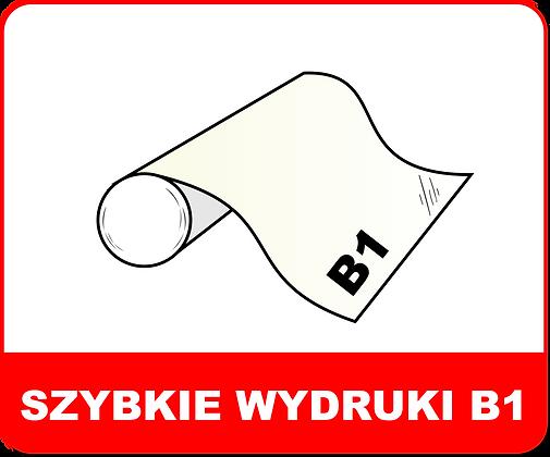 CAD B1