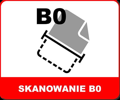 SKANOWANIE WIELKOFORMATOWE B0