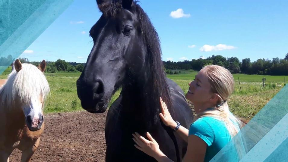 Mieux-être facilité par le cheval