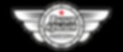 Logo VK V wix.png