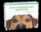 Stop 7 stressful dog behaviours ebook