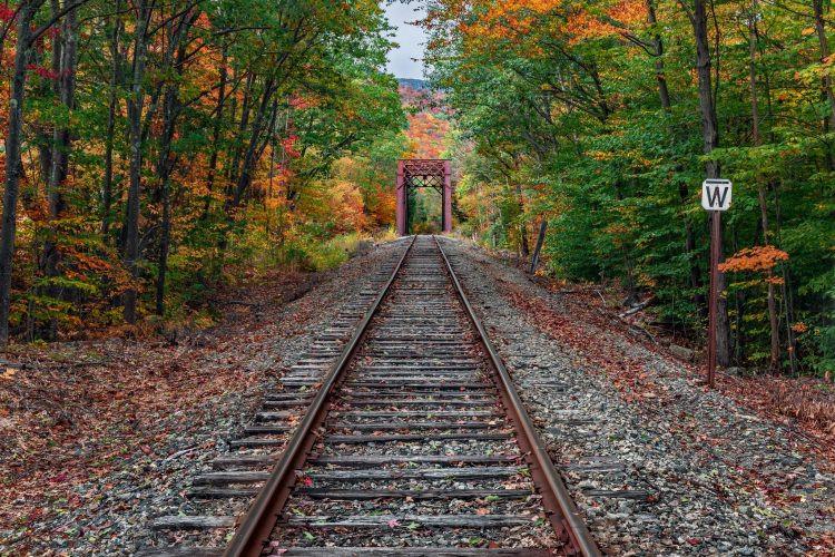Doğançay Tren İstasyonu: Asırlık İstasyona Ziyaretçi Akını