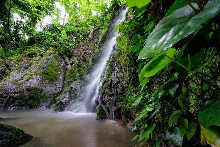 Güzeldere Şelalesi: Ormanın İçindeki Eşsiz Güzellik