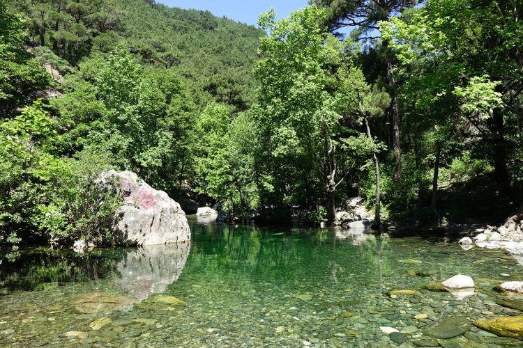 Kaz Dağları: Koruma Altına Alınması Gereken Güzellik