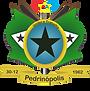 bandeira pedrinopolis final.png
